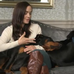 Victoria Pendleton's Dogs – Stella and Mr. Jonty – Dobermans